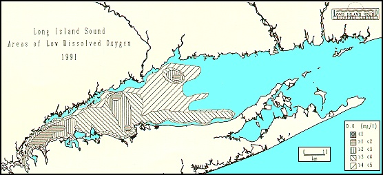 Long Island Sound Bottom Map