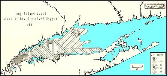 Long Island Sound Bottom Map