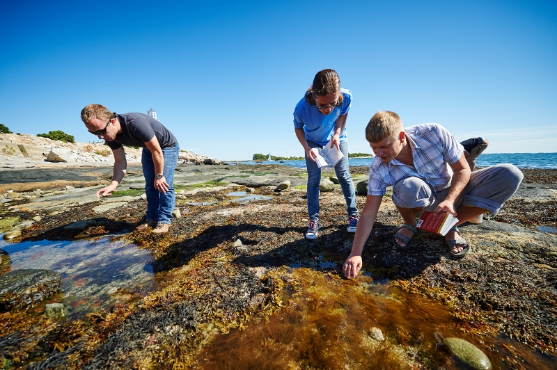 Hannes Baumann leads a marine sciences class outdoors at the Avery Point campus on Sept. 23, 2015