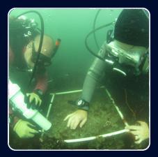Diving Program